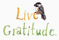 Gratitude – Day9