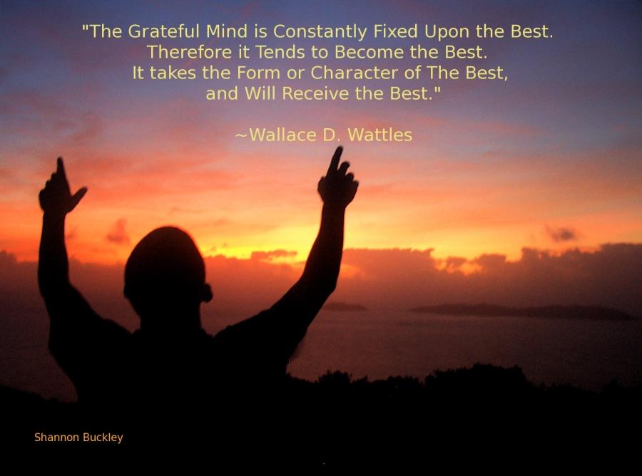 Gratitude – 21st October2015
