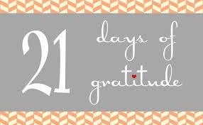 Gratitude – Day19