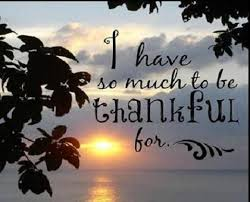 Gratitude – 26th November 2015